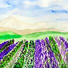 Lavender Fields  by Charisse Colbert