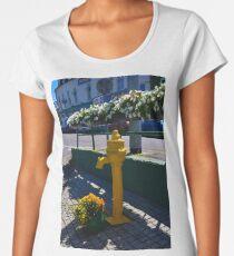 Water pump Bantry Co Cork Women's Premium T-Shirt