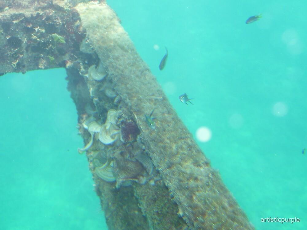 Barrier Reef Fish by artisticpurple
