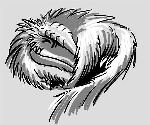 Baby raptor by Dana Sibera