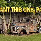 I WANT THIS ONE, PA!, Photo, greeting card by Bob Hall©