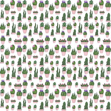 Handdrawn succulents by Arollo