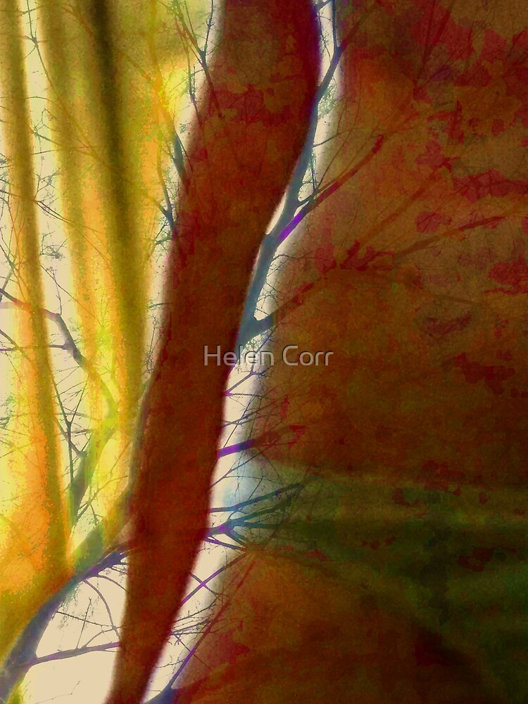 growth ... by Helen Corr