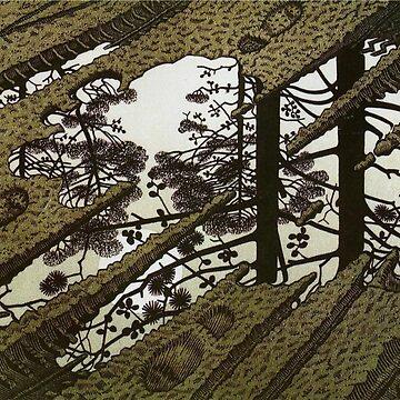 Puddle 1952 paradox - Maurits Cornelis Escher by CodyBradley
