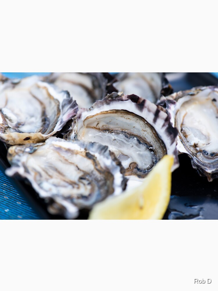 Closeup of fresh shucked oysters. by artistrobd