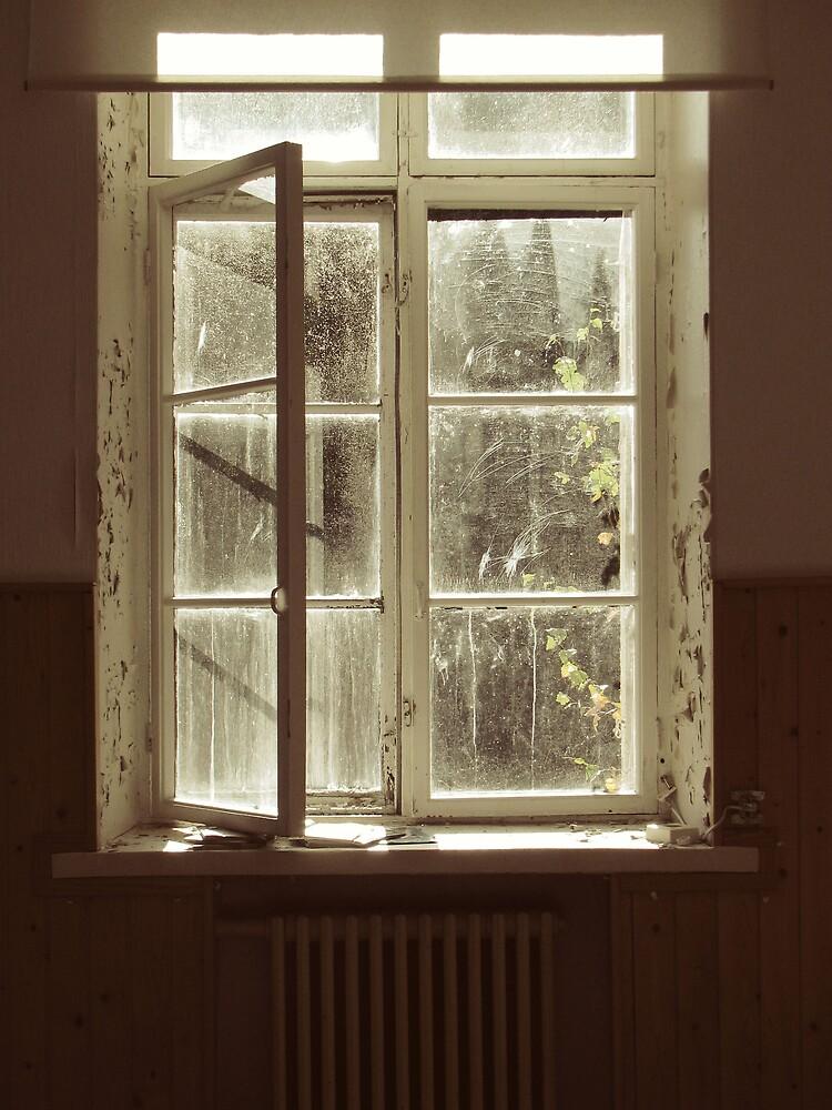 4.10.2009: Empty Openings by Petri Volanen