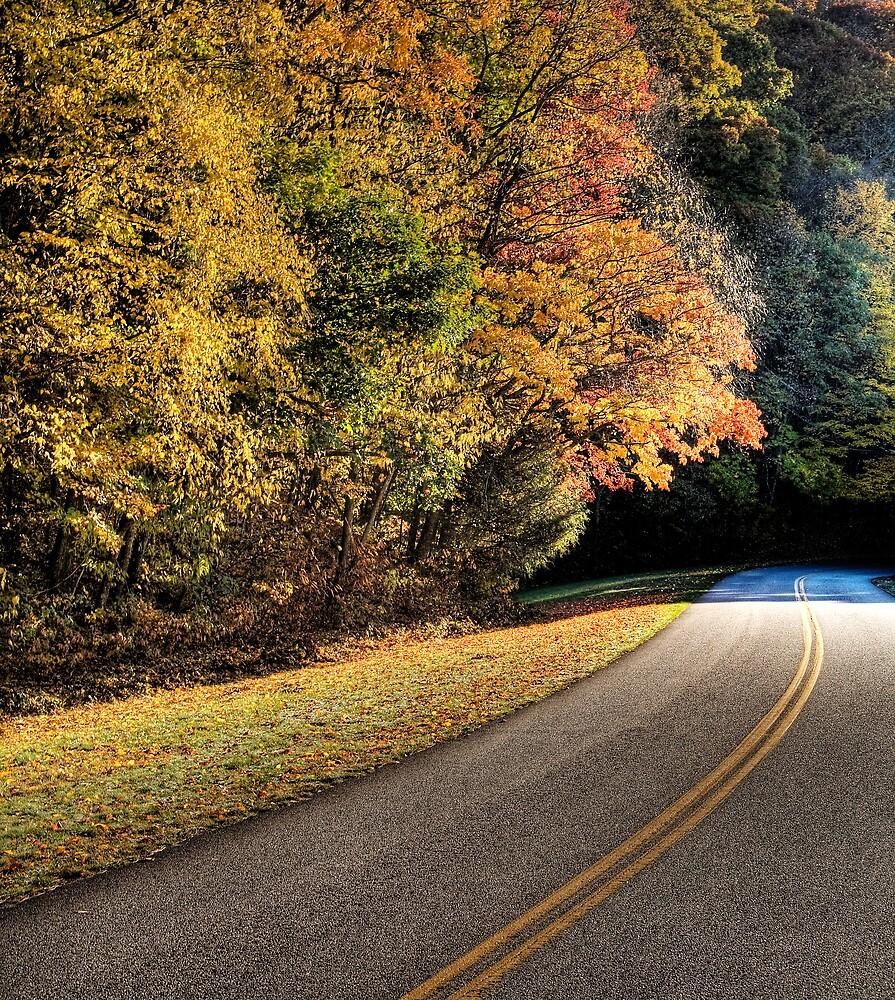 Autumn road by Carlos Restrepo
