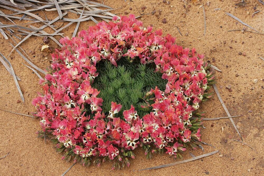 wreath flower 2 by bmcm