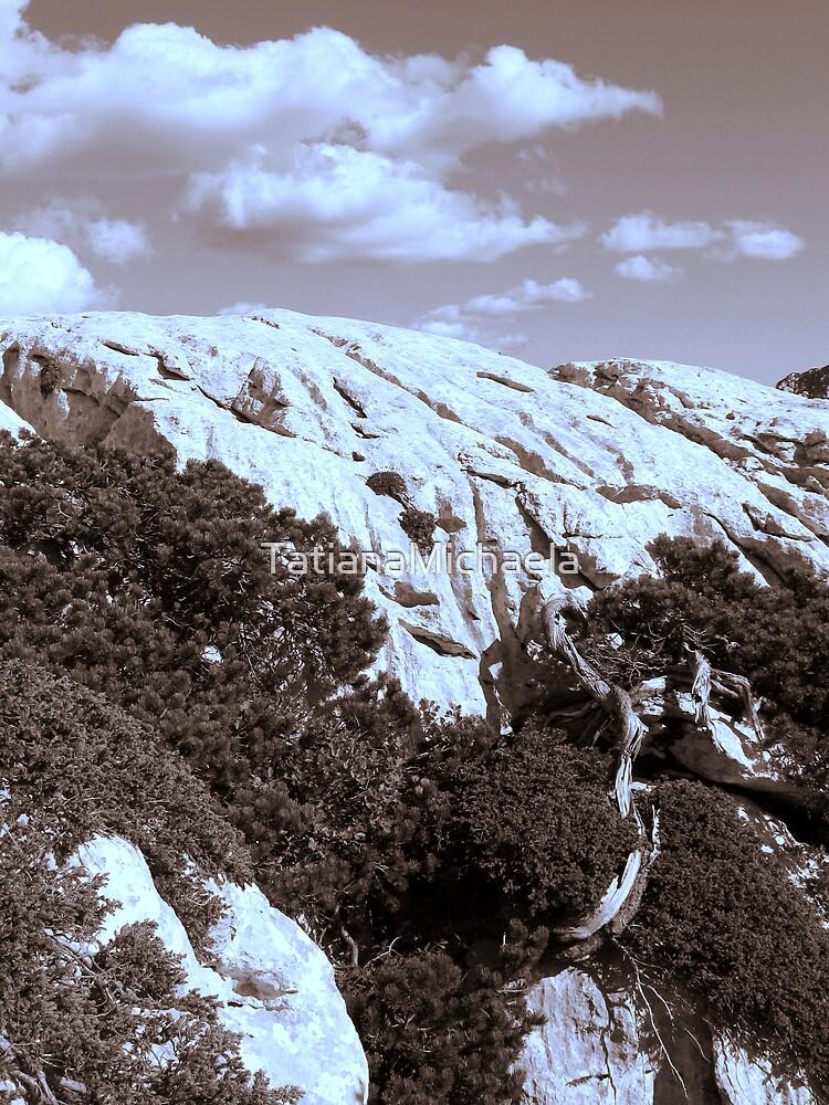 MOUNTAINS in Sepia tone by TatianaMichaela