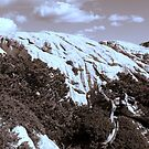 MOUNTAINS in Sepia tone by TatianaMichaela