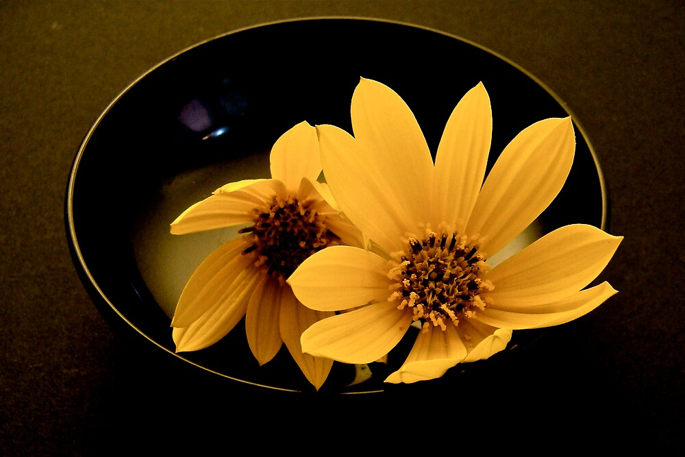 still life with yellow  flowers by anisja