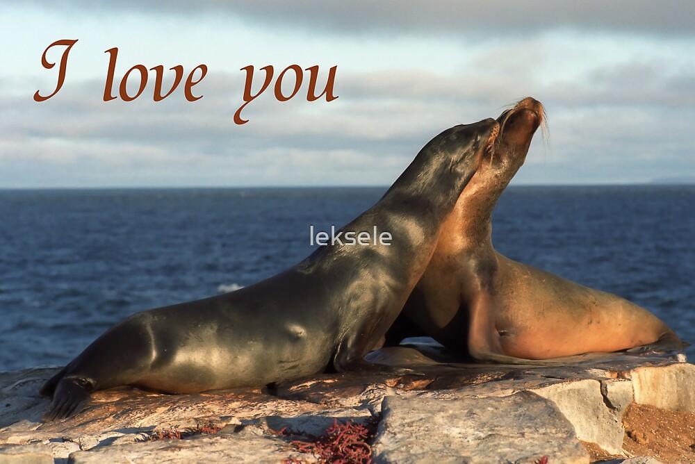 I love you card by leksele