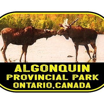 Algonquin Provincial Park Ontario Canada Moose by MyHandmadeSigns