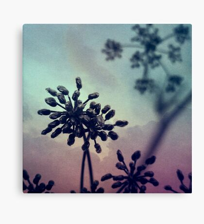 Gravity Bloom Canvas Print