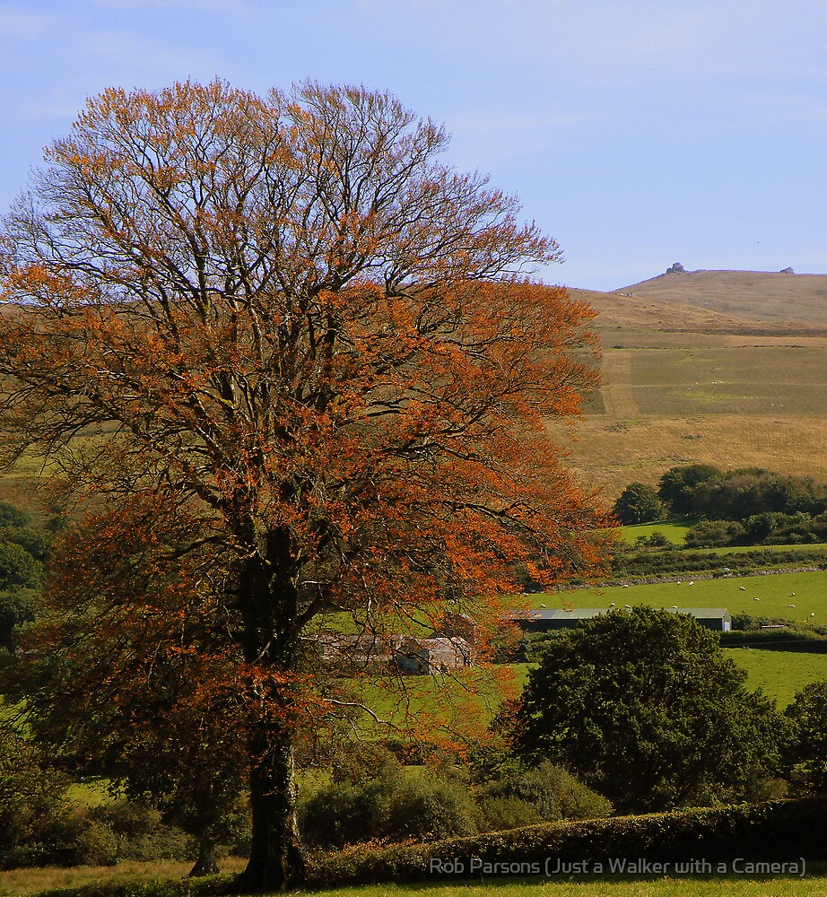 Dartmoor: Autumn Colours by Rob Parsons (Just a Walker with a Camera)