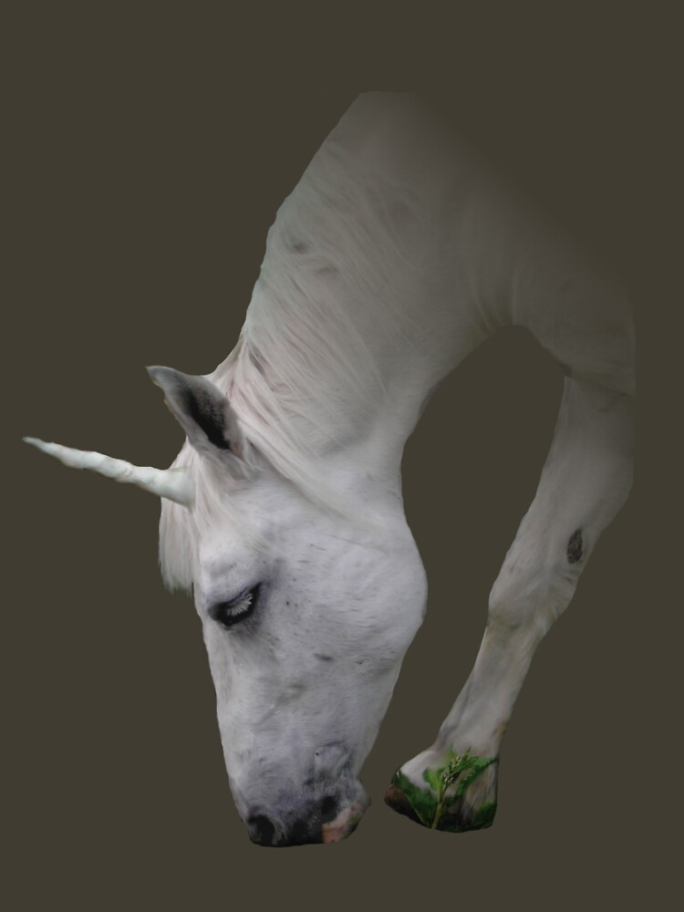 Unicorn by Lulabella