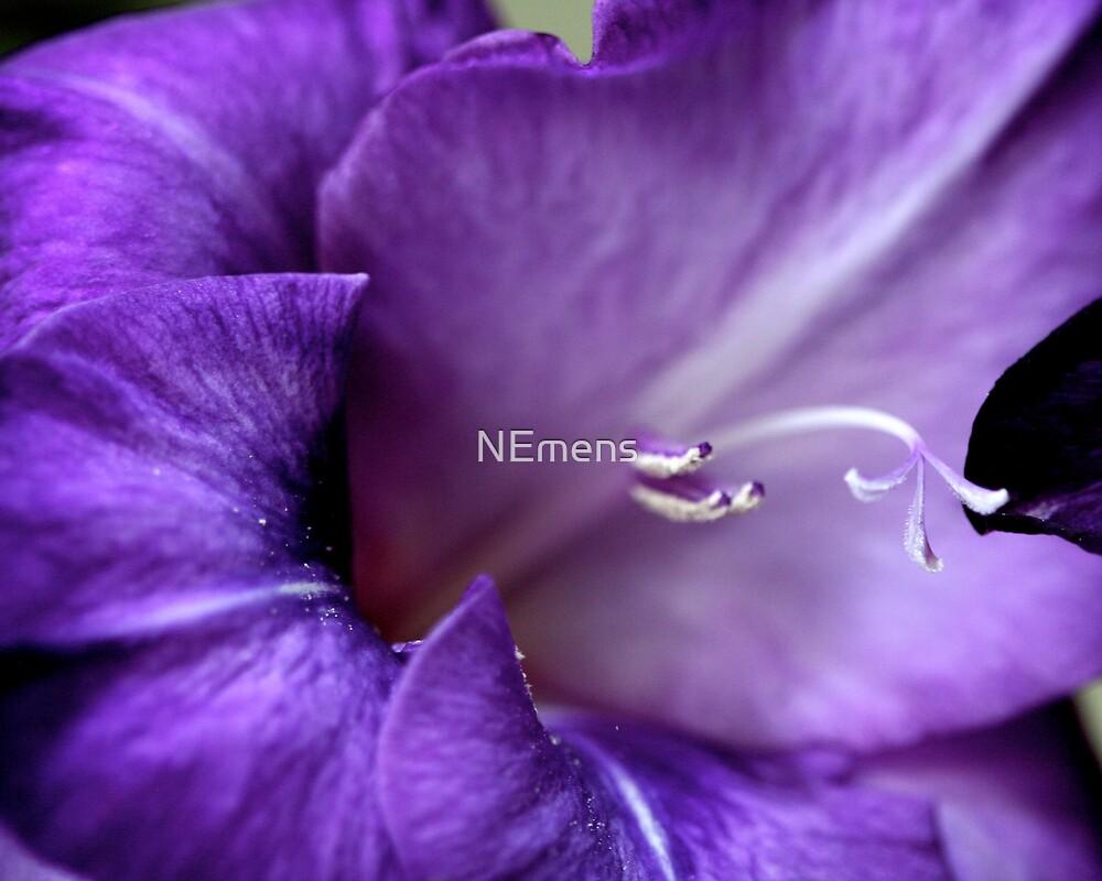 untitled by NEmens