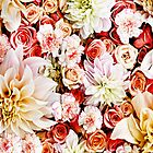 Floral Feature Wall  by cjcphotography