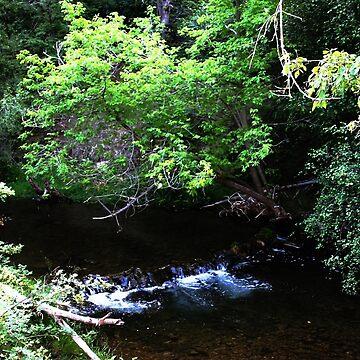 Gentle Summer River by Falln