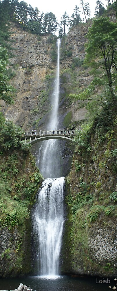 Multnomah Falls by Loisb