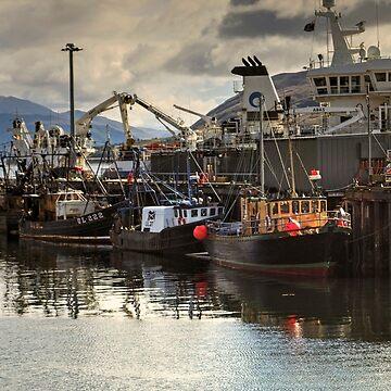 Ullapool Harbour by VoluntaryRanger