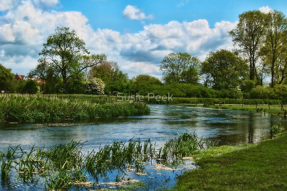 River Frome At Grimstone, Dorset by Susie Peek