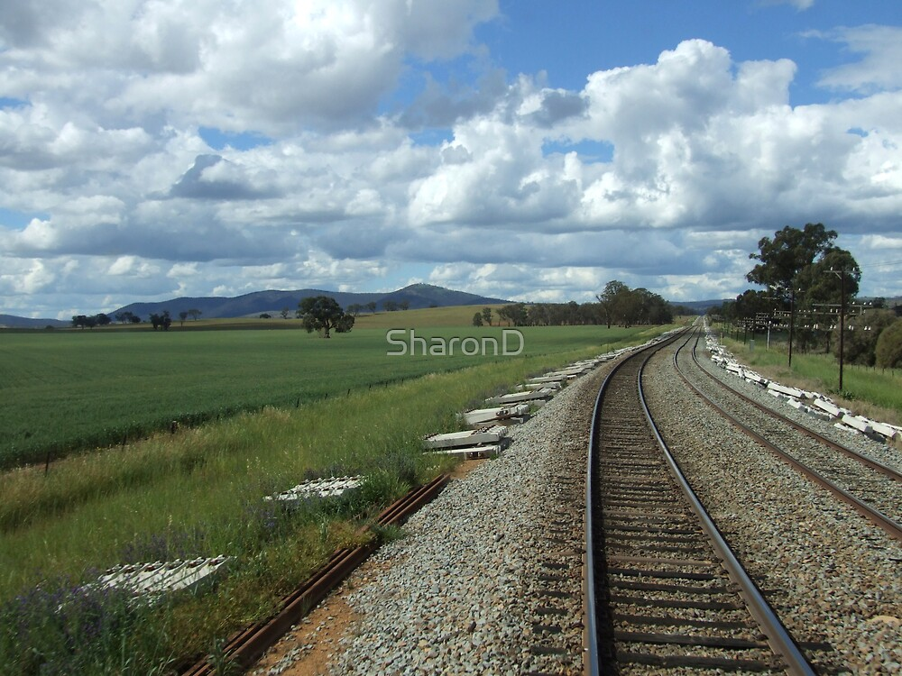 View From the Railmotor by SharonD