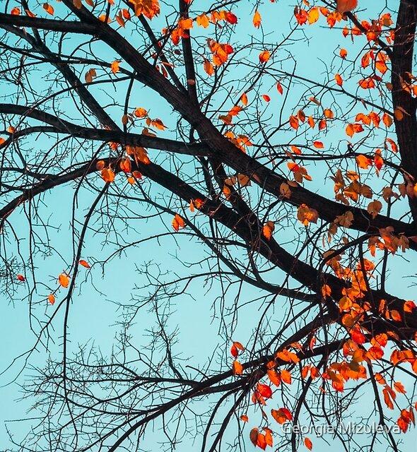 Jazzy Autumn Tree -  by Georgia Mizuleva