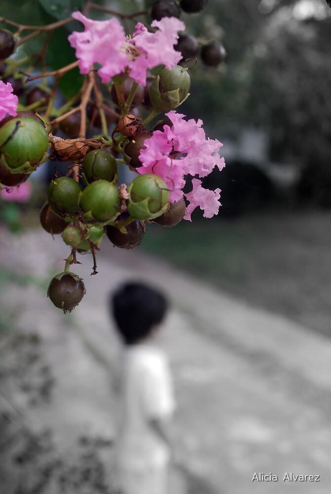 Lost. by Alicia  Alvarez
