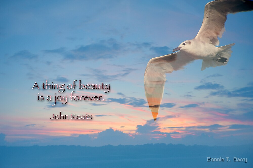 A thing of beauty is a joy forever . . . by Bonnie T.  Barry