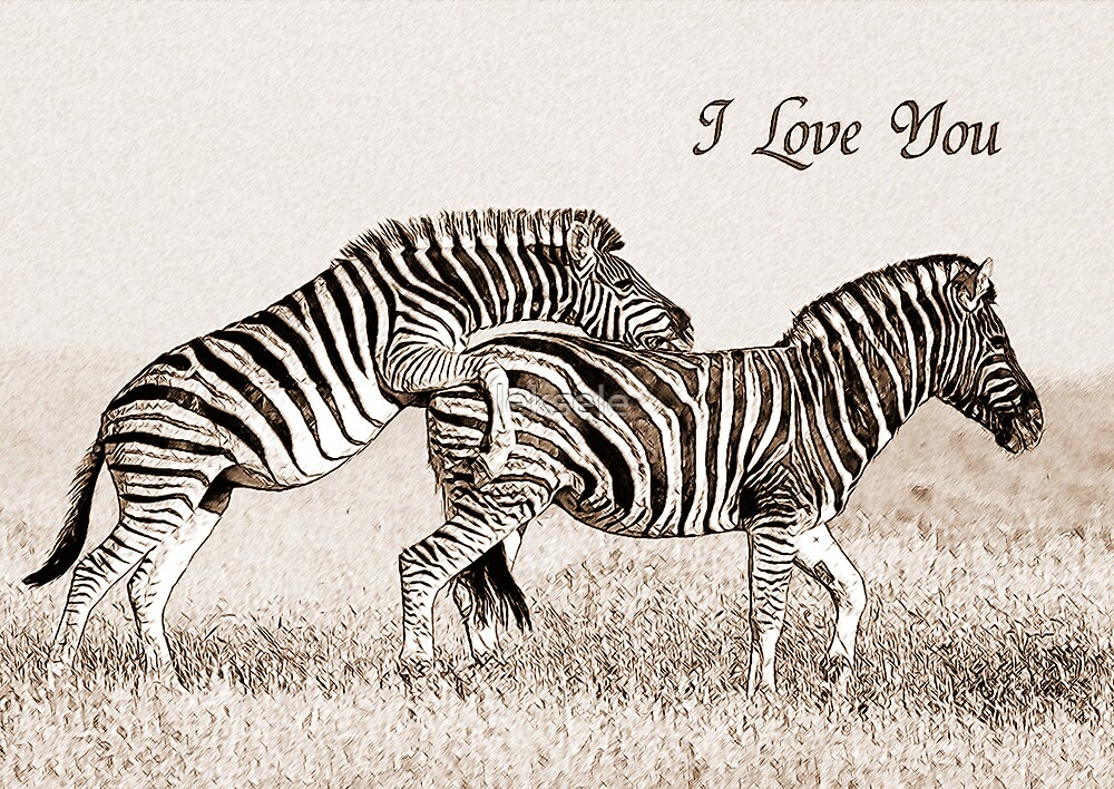 two zebras in love card by leksele