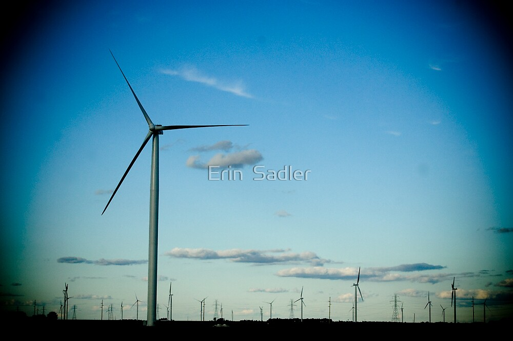 Winds, Winds by Erin  Sadler