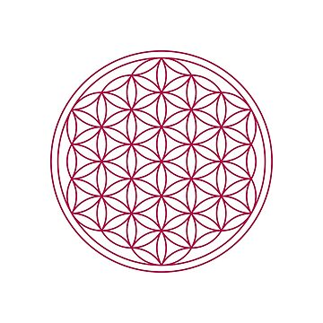 The Flower of Life by fourretout