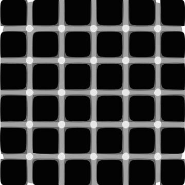 Hermann Grid Illusion by ColorfulCortex