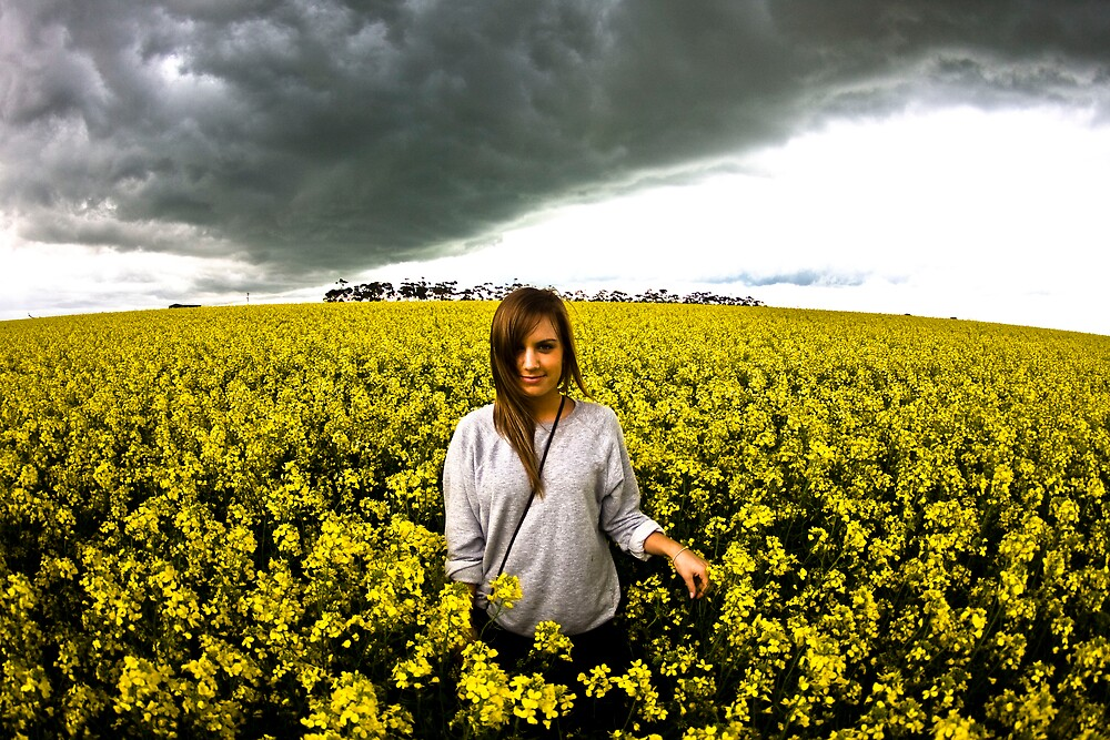 Bridie Canola Fields by Robbie Gibson