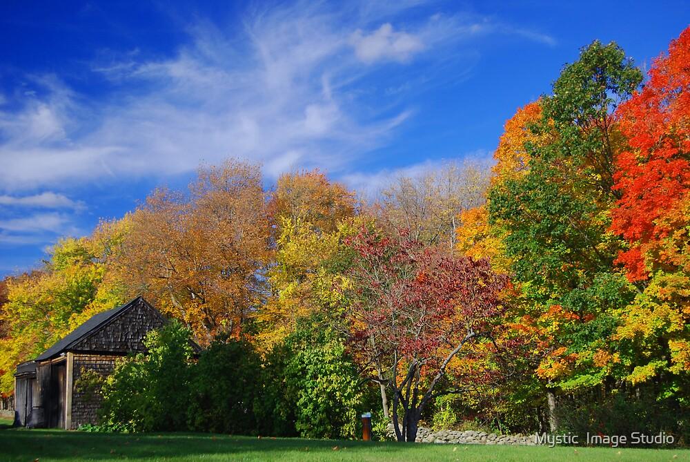 New England Shingled Barn  by OntheroadImage