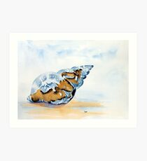 The Glass Shell Art Print