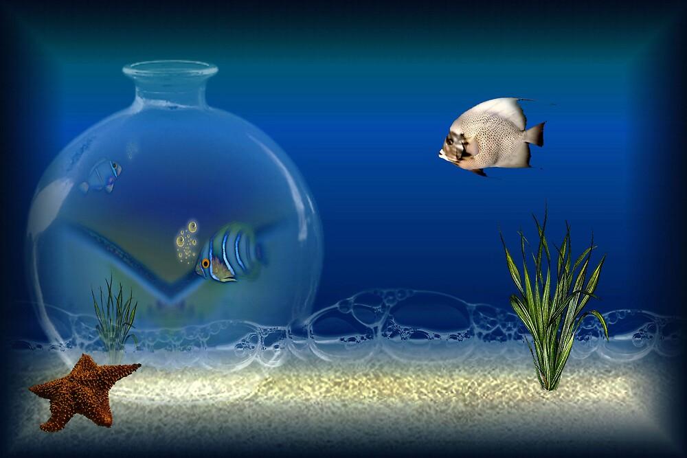 ~ Swim Fishy Swim ~ by love2shoot
