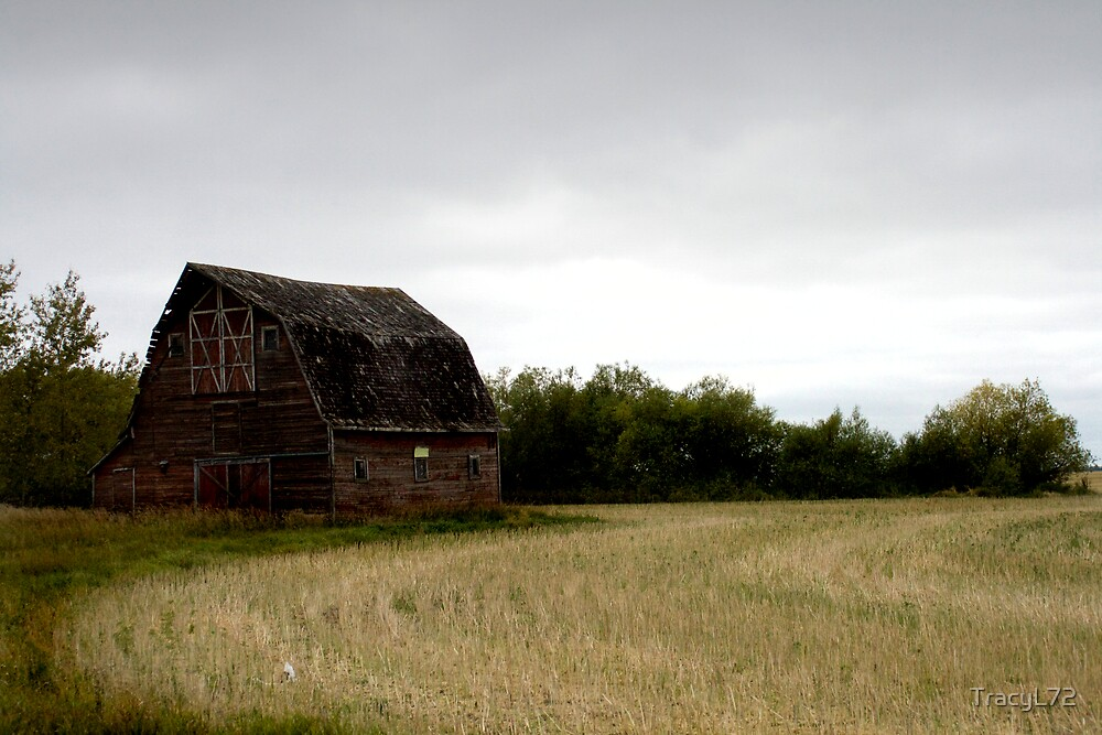 The Lone Barn by TracyL72