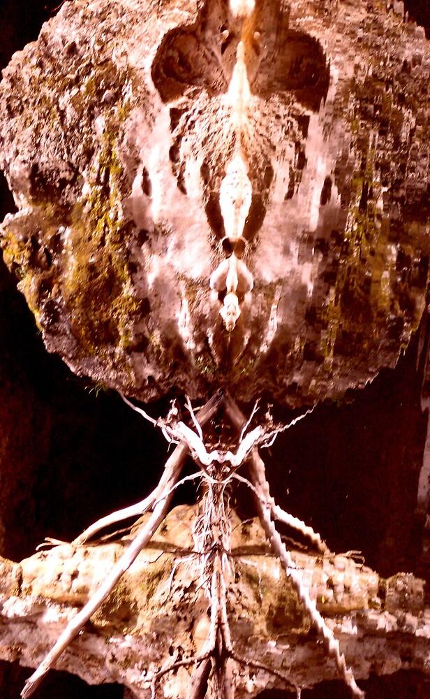 Monkey Face by sueserein