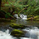 Yannathan Cascades - Great Otways National Park by ShaneBooth