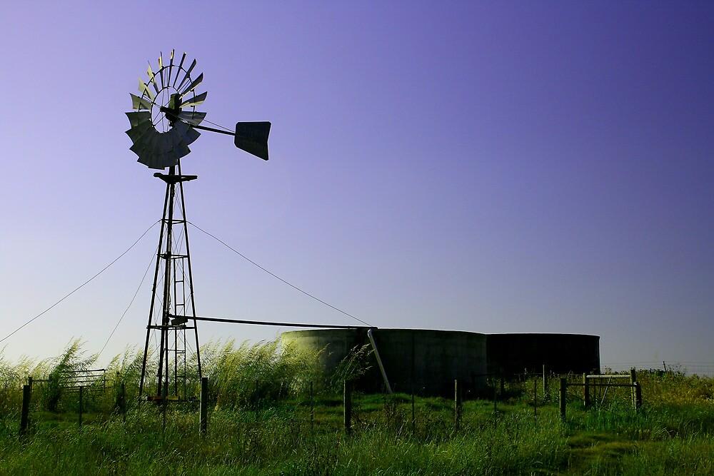 On the Farm by DianaC