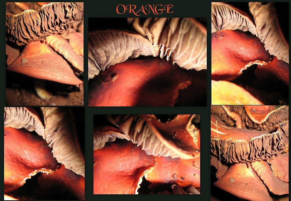 ORANGE. by the6tees