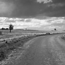A Country Road by Pamela Inverarity