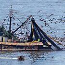 Fishing In the Pacific by Bernai Velarde PCE 3309