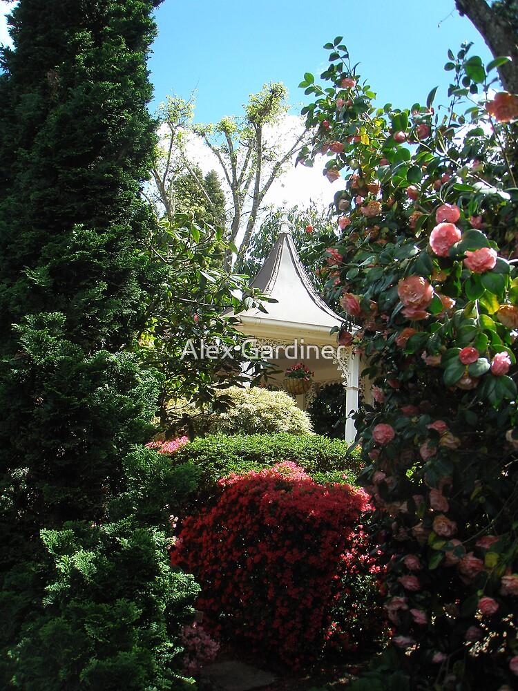 Introducing Leura Gardens~bd4 by Alex Gardiner