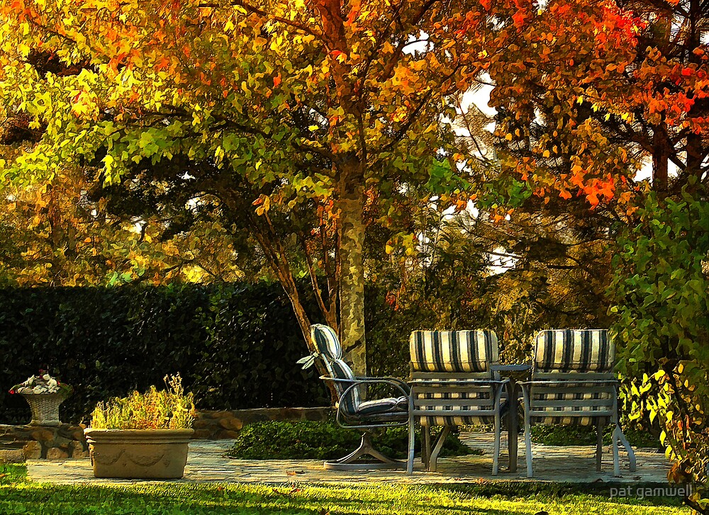 Backyard Autumn by pat gamwell