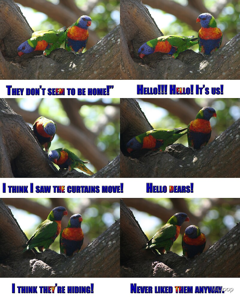 Bird talk.  by MrJoop
