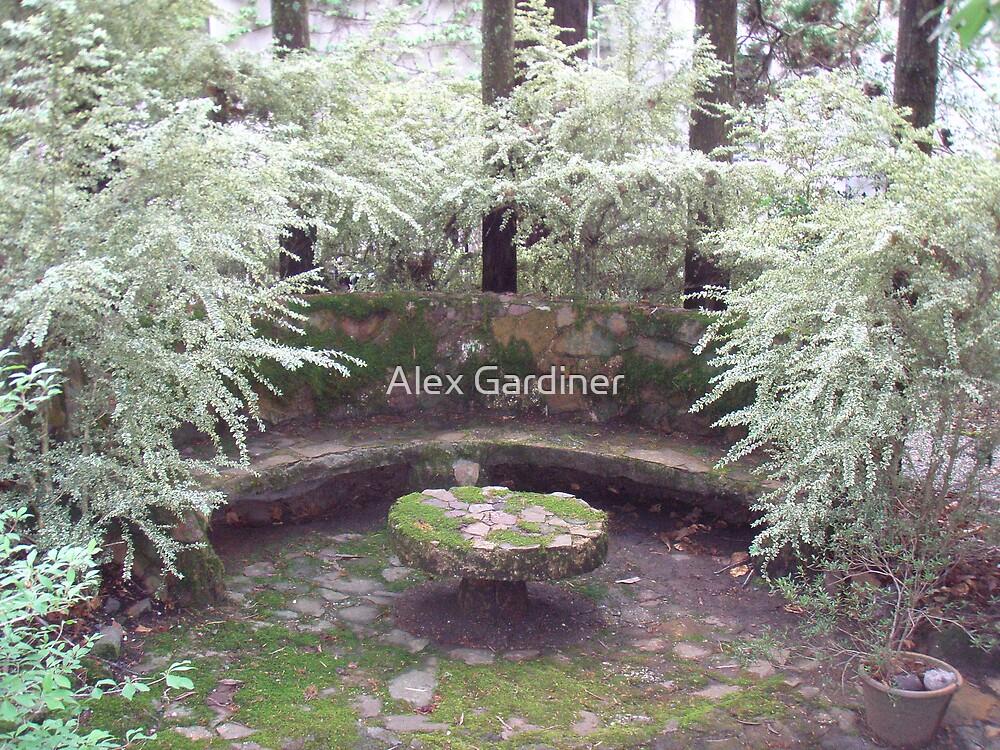 Introducing Leura Gardens~lg11 by Alex Gardiner