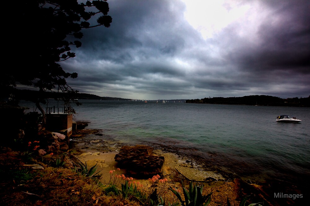 Stormy View From Shark Island Sydney I by MiImages